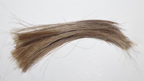 Haarprobe